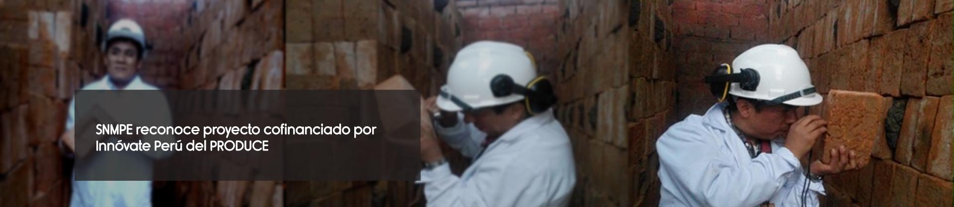 SNMPE reconoce proyecto cofinanciado por Innóvate Perú del PRODUCE