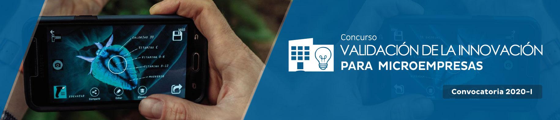 Validación de la Innovación para microempresas